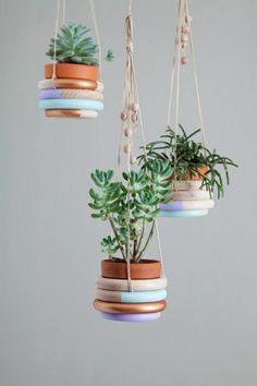 hängende zimmerpflanzen blumenampel topfpflanzen
