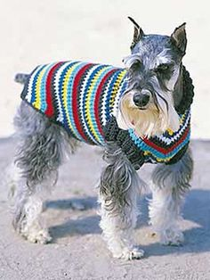 Dog Coat | Yarn | Free Knitting Patterns | Crochet Patterns | Yarnspirations