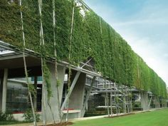Referenzobjekte | Fachvereinigung Bauwerksbegrünung e.V. | Dachbegrünung Gründach Fassadenbegünung
