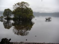 WHW Day 2 - Along the bonnie bonnie banks of Loch Lomond on our way to Rowardenan.  #scotland #westhighlandway