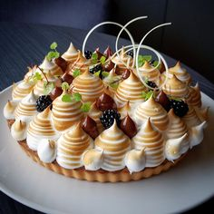 Look at this creative take on a classic meringue pie, or pavlova. The added fruit topping and pipped dollops of chocolate just makes this dessert stand out! Gourmet Desserts, Fancy Desserts, No Bake Desserts, Just Desserts, Delicious Desserts, Yummy Food, Gourmet Foods, Plated Desserts, Cupcakes