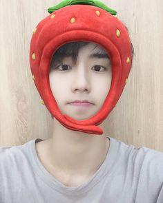 Rapper, Baby Squirrel, I Still Love Him, Fandom, Kids Board, Lee Know, Meme Faces, Lee Min Ho, Korean Boy Bands