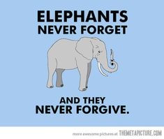 Funniest Elephant Quotes