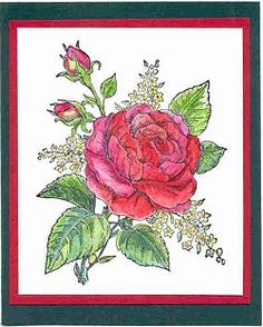 coffeehouse seasonal chat arts crafts adult colouring advice needed