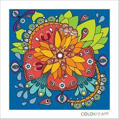 colorfy 0