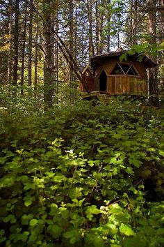 Eco Dwelling <3