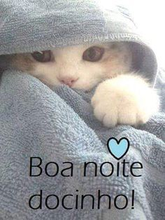 Resultado de imagem para cat wrapped in towel Good Night Cat, Bible Photos, Animals And Pets, Cute Animals, My True Love, Love Pet, Good Morning, Dog Cat, Nostalgia
