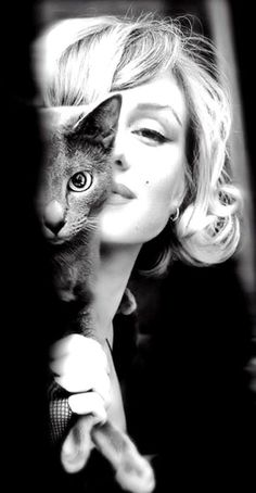 Marilyn Monroe with a Russian Blue. This picture makes me smile. That kitty is gorgeous and so is Marilyn! Crazy Cat Lady, Crazy Cats, Classic Hollywood, Old Hollywood, Hollywood Actresses, Russian Blue, Portraits, Foto Art, Cat People