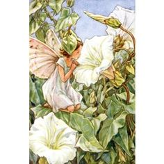 Morning Glory Fairy Vintage Wall Art