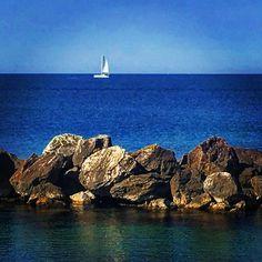 the_tuscan_sunflowerSailing😀 #mare #sea #vela #sailing #baracchinabianca #livorno #leghorn #tuscany #toscana #igerslivorno #igerstoscana #igersitalia #italia #italy #tourguide #guidaturistica #orizzonte #horizon #photo #photography #foto #fotografia #thetuscansunflowerblog #hygge #meaningoflife #life #vita #imagesoftuscany