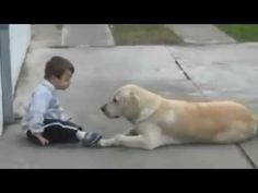 Little Boy w Down's Syndrome & His Dog - Unconditional Love of