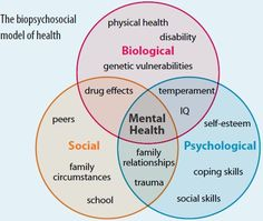 The biopsychosocial model Vita VR blog: http://vitavr.wordpress.com/2013/10/20/the-biopsychosocial-model/
