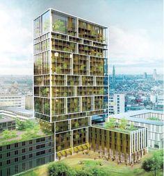 Deens bureau bouwt toren in Antwerpen Nieuw Zuid, met groene oase van drie verdiepingen - Binnenland - De Morgen