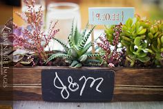 Succulent centerpiece, with chalkboard plate for table number/decor