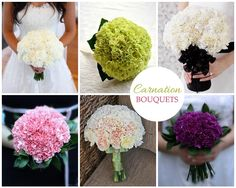 carnation flowers bouquite | mood board with different carnation wedding bouquets