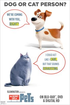 Rag Doll Cat Facts It doesn't matter if you're a cat or dog person, THE SECRET LIFE OF PETS is full of laughs for all animal-lovers. Own it on Blu-ray Pet Dogs, Dog Cat, Funny Animals, Cute Animals, Secret Life Of Pets, Disney Quotes, My Animal, Pet Birds, Animal Pictures