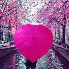 This photo of a hot pink heart shaped umbrella with a cherry blossom background and canal is so pretty. Pink Love, Cute Pink, Bright Pink, Pretty In Pink, Pink Umbrella, Umbrella Art, Everything Pink, Landscape Illustration, Illustration Art