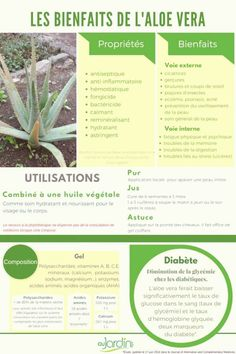 Diabetes diet 689543392921683563 - Les vertus de l'aloe Vera Source by Pineapple Health Benefits, Turmeric Health Benefits, Best Nutrition Food, Health And Nutrition, Subway Nutrition, Nutrition Data, Cheese Nutrition, Nutrition Articles, Body Fitness