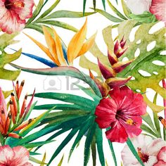 Beautiful vector pattern with watercolor tropical sterlitzia Stock Vector