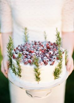 sweet simple cake with white frosting, sugared cranberries and rosemary or some similar herb