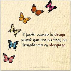 Y justo cuando la oruga pensó que era su final, se transformó en Mariposa.