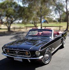 1967 convertible Mustang