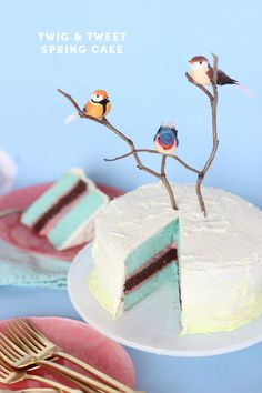 BIRTHDAY WEEK: DIY twig & tweet spring cake | The Sweet Escape