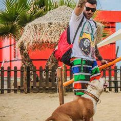 Rimini Dog No Problem Foto Spiaggia Rimini