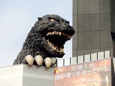 Hotel Gracery Shinjuku (The Godzilla Hotel) – Shinjuku Station Front Desk Hotel, Coin Operated Laundry, Robot Restaurant, Shinjuku Tokyo, Hotel Lounge, Red Light District, Japanese Landscape, Japan Travel