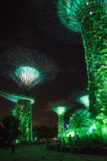 """City In A Garden: Among Supertrees, Waterfalls & Futuristic Domes"" 