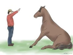 Image titled Teach Your Horse to Lie Down Step 12