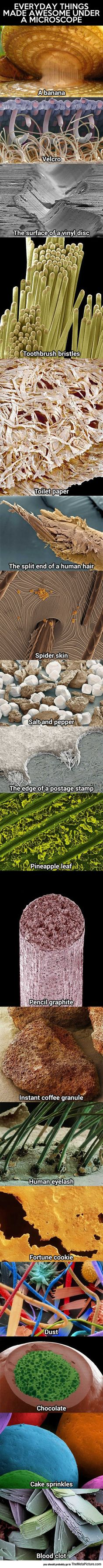 Everyday Things Under A Microscope.  Toilet paper looks horrifying