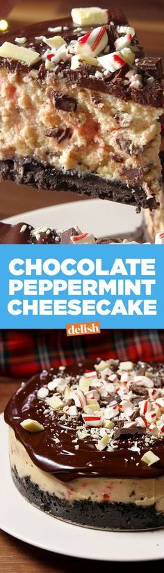 Looking for the best Christmas cheesecake recipe to make? This Chocolate Peppermint Cheesecake is the best. Halloween Desserts, Holiday Baking, Christmas Desserts, Christmas Cheesecake, Christmas Treats, Cupcakes, Cupcake Cakes, Just Desserts, Delicious Desserts