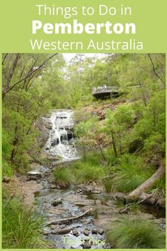 Cheap Things to Do in Pemberton, Western Australia - Tips 4 Trips The Top Must See Things to Do in Pemberton When on a Road Trips Through South West Australia Western Australia, Australia Travel, Queensland Australia, Australian Road Trip, Cheap Things To Do, Travel Tours, Travel Ideas, Ocean Photography, Photography Tips