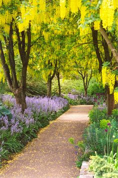 VanDusen Botanical Garden, Vancouver, British Columbia