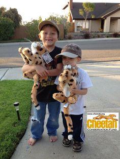 Kids love cheetahs  Cheetah Conservation Fund www.cheetah.org  Chewbaaka's Cheetah Friends #chewbaakascheetahfriends  Facebook.com/Chewbaakascheetahfriends