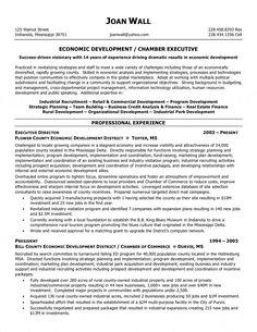 Resume For Free Example Of Developer Resume  Httpresumesdesignexampleof .