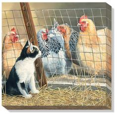 Visit with the Hens – Cat and Chickens by Susan Bourdet