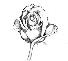 2375 Meilleures Images Du Tableau Fleurs Painting Drawing