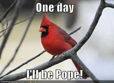 When I was a kid I always imagined the cardinals as actual birds!