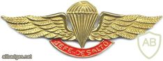 COLOMBIA Jumpmaster Parachutist wings
