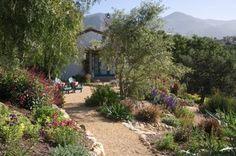 Mediterraner Garten gartengestaltung-olivenbaum-steinweg-kiesweg-immergruene-pflanzen