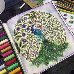 Elke Talone Jardim Secreto Enchanted Forest Book, Enchanted Forest Coloring Book, Secret Garden Book, Johanna Basford Secret Garden, Secret Garden Coloring Book, Johanna Basford Coloring Book, Colouring Techniques, Color Pencil Art, Copics