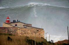 biggest wave & a surfer