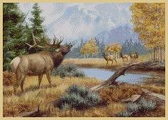 Art of Penny Parker Paintings Famous, Famous Art, Wildlife Paintings, Wildlife Art, Kitsch, Elk Pictures, Online Art Courses, Art Online, Penny Parker