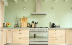 Nice kitchen/Light wood and stainless