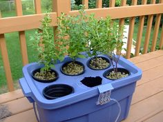 Hydroponic made simple