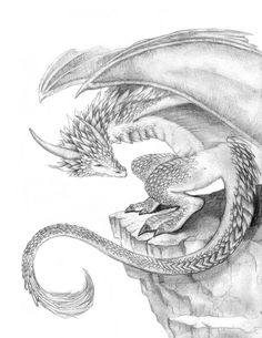 1000 Images About Mythical Creatures On Pinterest Dragon A Dragon And Drawings Of
