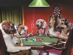 Pictures of a group of dogs playing poker including: A St. Bernard, A Weimeraner, A German Shepard, A Collie, and a Bulldog Funny Dog Photos, Dog Pictures, Animal Pictures, Funny Pictures, Dolphin Mall, Jungle Drawing, Dogs Playing Poker, Funny Paintings, Group Of Dogs