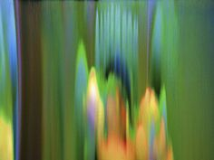 Valentines Selfportrait Nikon glitch  #deadcameraworks  #photo #photography #light #art #prints